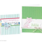 1701-se-some-kinda-wonderful-cardmaking-card-set